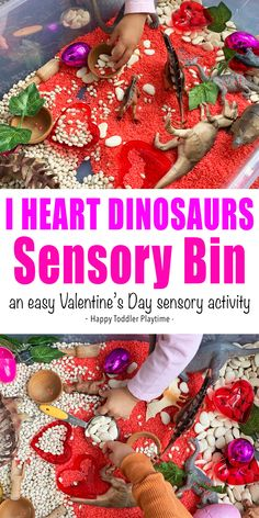 Valentine's Day Dinosaur Sensory Bin - HAPPY TODDLER PLAYTIME Valentine's Day dinosaur sensory bin is a fun way for your dinosaur fan to play with dinosaurs this Valentine's Day. Grab your red rice and dinosaur toys for a fun I heart dinosaur time! Valentines Anime, Kinder Valentines, Valentine Activities, Valentines Gifts For Boyfriend, Valentine Day Crafts, Sensory Bins, Sensory Activities, Infant Activities, Activities For Kids