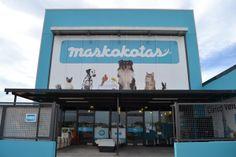 Los amigos de Maskokotas son la #TiendaDeLaSemana!! Conoce todas las actividades que llevan a cabo, su equipo y los peludos que te recibirán  No te pierdas los #descuentos especiales sólo durante esta semana! http://blog.hagen.es/?p=1163 #Productos #Mascotas