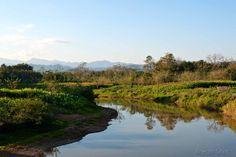 Au village de Ban Pasak près de Luang Namtha