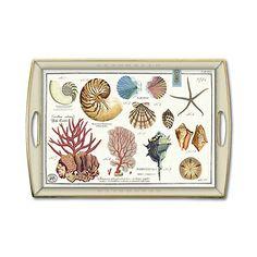 Shells Rectangle Decoupage Wooden Tray