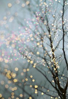 Christmas Dreams & Twinkle