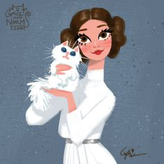 Love this Picture of Princess Leia and a cute fluffy kitten!