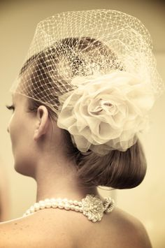 Beautiful birdcage veil!!