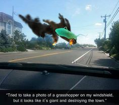Grasshopper Perspective Manipulation