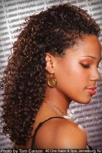 pulled back, plus headpiece? so hard to find wedding hairstyles for ethnic curly hair!!!