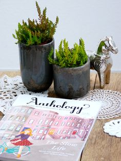 Subscription to Anthology. A seasonal guide of inspiration.
