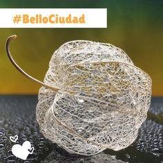 #BelloCiudad Bellisima, Cities