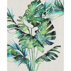 Art Group Summer Thornton - Monstera Leaves Canvas Wall Art