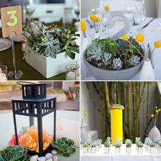 Succulent wedding centerpieces with comic book decoupage vases via the Knot
