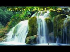 CASCADA PARAISO,SONIDOS DE LA NATURALEZA, SOUND OF NATURE, RELAJANTE, RELAX, RELAXATION, RELAXING - YouTube