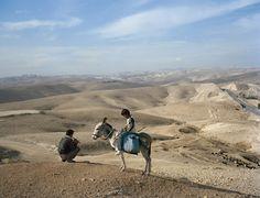 A herder serenading his goats near Jerusalem, Israel.  Photo: Greg Girard.