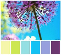 Great mood board colorx for a bright, cheery room