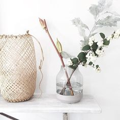 Beautiful photo of the Elevated vase from Muuto by Du får vasen her www.no by designbazaar_no Glass Vase, Town House, Inspiration, Beautiful, Baskets, Instagram, Interiors, Create, Home Decor