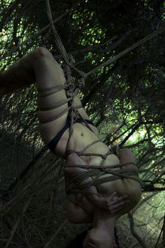 Ropework: Tamandua In ropes: Dasniya