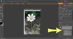 Photoshop Elements Tutorial - Colorize