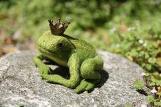 Wunderschöner Frosch von Rotraud Reinhard