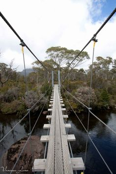 Overland Track, Tasmania - I want to go here! Tasmania Australia, Australia Travel, Cairns, Newcastle, Melbourne, Places To Travel, Places To Visit, Surfer, Little Island