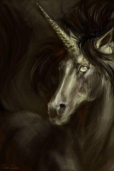 Licorne #unicorn