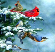 ★Christmas Cardinals★   — Artist: Abraham Hunter —