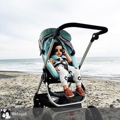 Life S A Beach With Stokkescoot