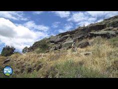 Rail Trail One Day Wonder Tour –  Bike it Now!