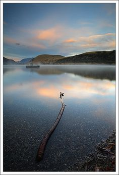 Lake Hayes by 67Bosely, via Flickr Millbrook Resort, Morning Sunrise, Getting Up Early, Where To Go, Amazing Photography, New Zealand, Places Ive Been, Beautiful Places, Sunrise Lake