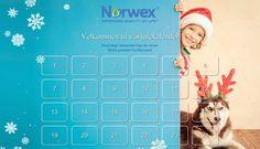 Årets julekalender fra Norwex Svar på dagens spørsmål og bli med i trekningen av effektive og miljøvennlige produkter.