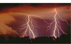 Average 100 lightning strikes occur worldwide every second. Cloud-to-ground lightning bolts are . Lightning Bolt, Pictures Of Lightning, Cartoon Cupcakes, Canned Heat, Lightning Strikes, Nature Animals, See Picture, Cool Pictures