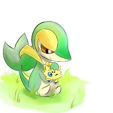 Image result for cute snivy