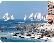 The Ocean Institute's annual Toshiba Tall Ships Festival, the largest annual gathering of tall ships on the West Coast!