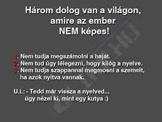 Három dolog van a világon amire az ember nem kėpes. Text Memes, Minden, Lol So True, Jokes Quotes, Funny Moments, Funny Photos, Quotations, Texts, Funny Jokes
