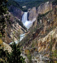 Yellowstone Canyon Yellowstone National Park [OC] [4822x5394]