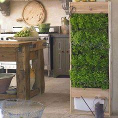 Kitchen with vertical herb garden
