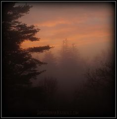 11-15-2014  Misty Morn ~ A foggy sunrise in Friendship, Maine. *** POSTCARDS FROM FRIENDSHIP. A pic a day served fresh daily from Friendship Maine. SuperHumanNaturals.com *** #toothsoap #cure #cankersores
