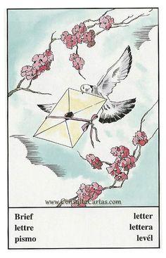 Oracle Cards, Diagram, Map, World, October 23, Gypsy, Angeles, Paloma Blanca, Lyrics