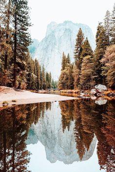 Yosemite National Park - Ryan Longnecker