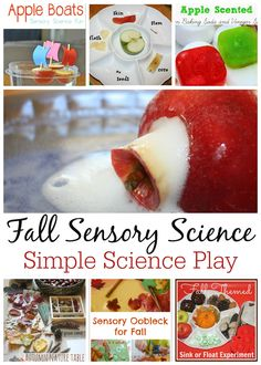 Fall Science Sensory Activities For Kids  Hands-On Learning And Sensory Play I just love Fall and Fall science activities. There are so many fun, fall specific ways to enjoy and learn about the season! New apples are in abundance, the season is changing with beautiful leaves, acorns and more ...