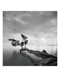 Art.fr - Paysages marins (photographies noir et blanc) - posters et peintures pour amoureux d'art