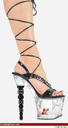 very inapropriate (stripper shoes) shoes but they are cool.  Reminds me of Disco days, I saw platforms with live fish, well maybe when they first put them on.  poor little things