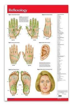 #AcupunctureMeridians