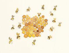 honey bee illustration art - Google Search