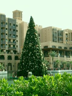 Christmas in Dubai