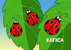 Katica bogar Yoshi, Bugs, Butterfly, Fictional Characters, Fa, Education, Google, Bicycle Crunches, Bowties