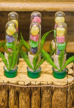 23 Clever DIY Christmas Decoration Ideas By Crafty Panda Die Dinos Baby, Baby Dino, Jungle Theme Parties, Dinosaur Birthday Party, Tropical Party, Candyland, Birthday Party Decorations, Party Time, Christmas Crafts