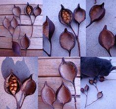 Mizu Designs: seed pods