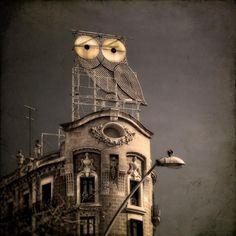 #bcn #barcelona #owl #lechuza #sky #cielo #edificio #bpremium
