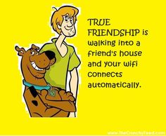 Scooby and shaggy true friendship meme