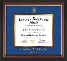 UNC Asheville U Diploma Frame-Rose Gold L-w/UNCA Seal-Blue Suede/Gold – Professional Framing Company