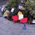 http://inhabitat.com/worlds-smallest-park-was-started-by-a-guerilla-gardener-over-65-years-ago/