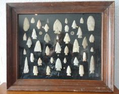 Authentic Native American 47 Pc. Arrowhead and Spearhead Framed Collection